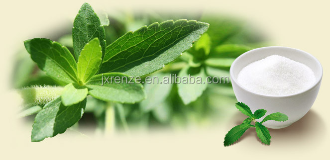 stevia chewing gum,stevia extract pure powder