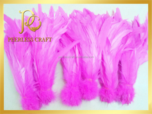 Dyed Color Chicken Feathers for Sale