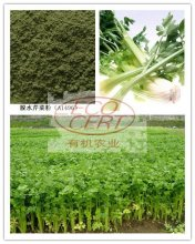 Organic Dehydrated Celery Powder