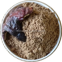 China Herbal product Natural quality Manufacturer of Lucid Ganoderma Extract