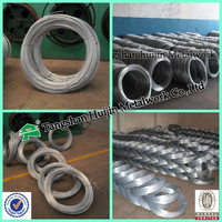 Bwg22 electro galvanized iron wire price, construction binding wire (china factory)