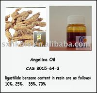 angelica oil of herbal extract