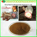 Manufacturer Supply 100% Natural Viagra Butea Superba Extract Powder 10:1/Butea Superba Capsule