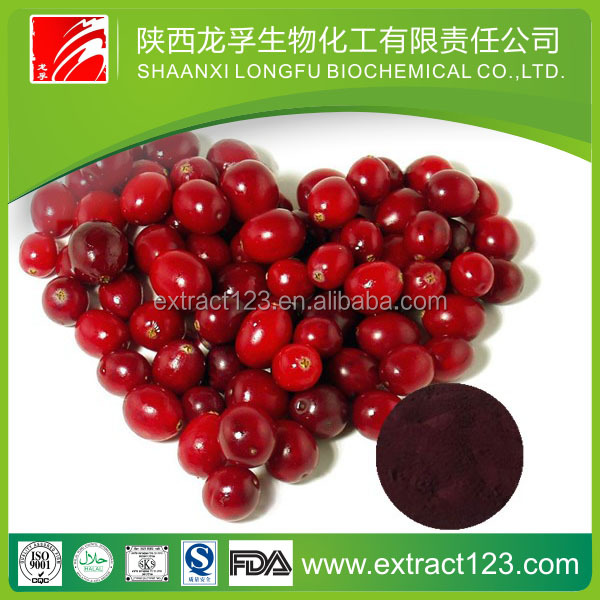 High quality bilberry /cranberry/ blueberry extract with low price bulk in supply
