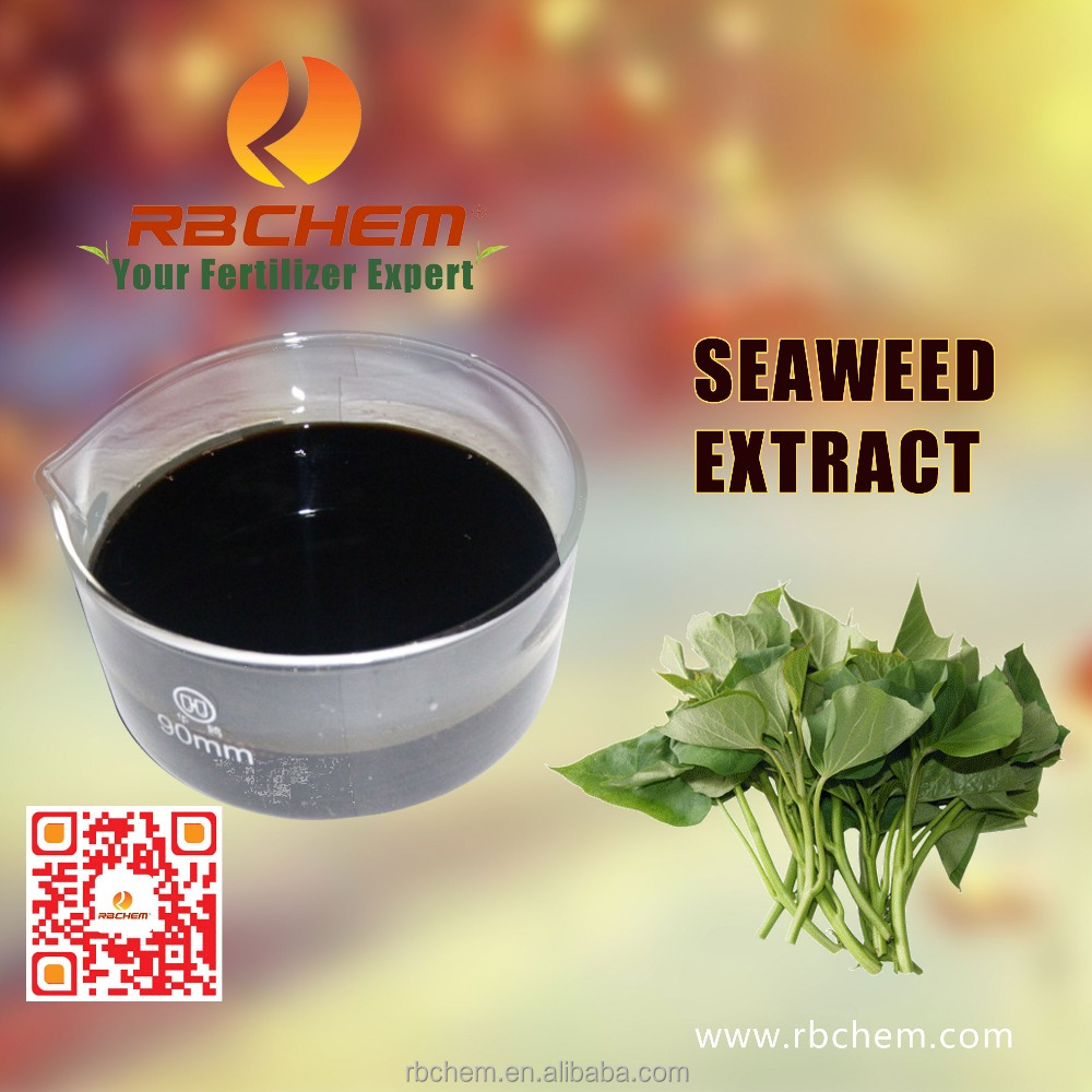 RBCHEM 100% soluble seaweed extract liquid organic fertilizer