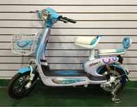 Hot Beautiful electric bicycle Electric bike electric with CE certificate