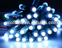 60mA ip68 rating led string,50pcs/string rgb led string lights ws2801 ws2812b