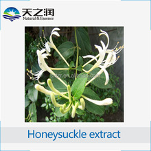 Weight Loss Best Price honeysuckle flower extract 20% chlorogenic acid / pain medications from china/diabetes