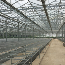 Turnkey service Agriculture Multi span glass greenhouse