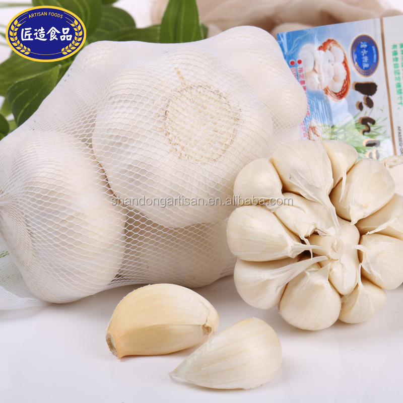 New harvest fresh garlic, dried garlic