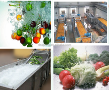 direct sell pepper Washing equipment //electric washer machine for shallot//tomato bubble washer