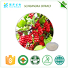 Herb medicine Hot sell Grape seed extract