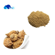 HNB Factory Supply Pure Organic Maca Root Powder for Hot Sales