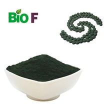 Natural and Pure Chlorella Powder Protein 60%