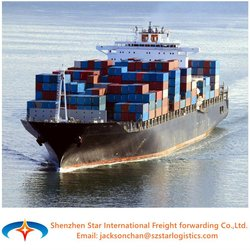 Ocean Shipping Service Freight Forwarder from China to AREZZO