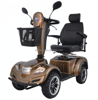 2015 Alienozo Handicapped Scooter with CE, electrical recreational vehicles with two seat, electric vehicle for elder