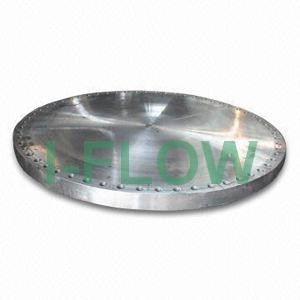 DN 300 Forged Blind Flange