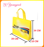 Factory Price High Quality Laminated PP Non Woven Handle Bag