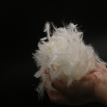 Washed white swan feathers duck down feather for sale