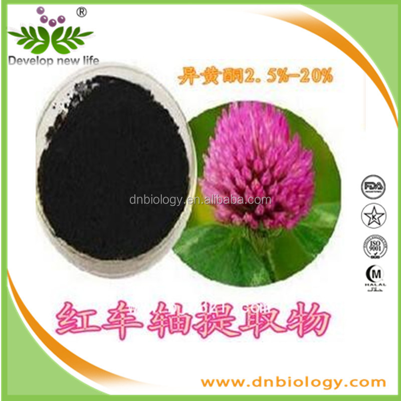 High Quality Natural Red Clover Flower Extract 40% isoflavones with Antispasmodic, cough, Zhichuan