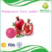 factory supply Pomegranate fruit powder free sample Light pink fine powder
