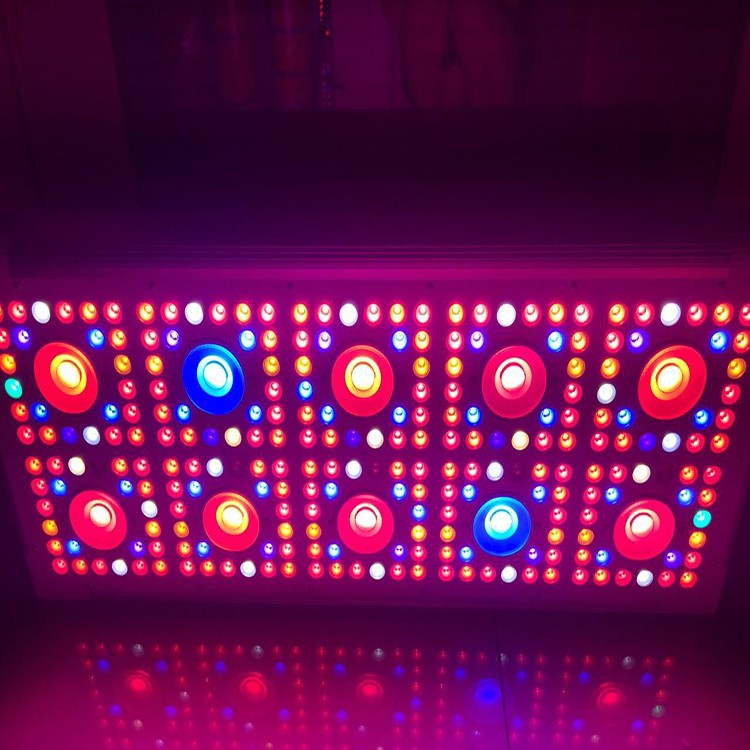 Best Selling Products Agricultural Greenhouse BP600 Full Spectrum LED Grow Lights