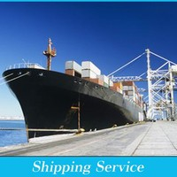 international freight forwarder Shipping from ningbo/xiamen to USA