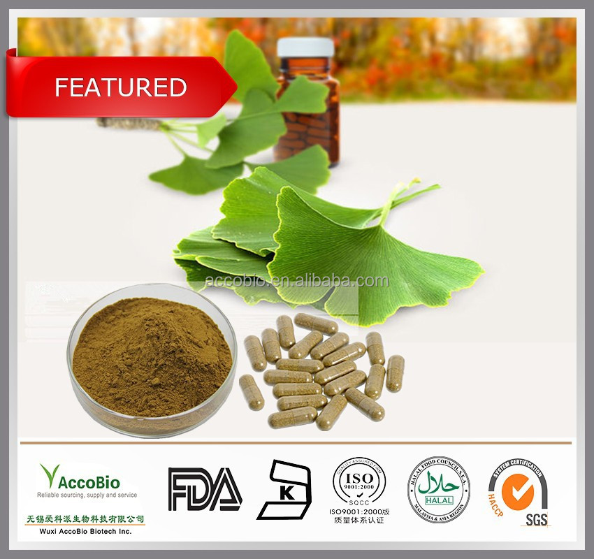 GMP Ginkgo Biloba Extract Wholesale, Natural Chinese Ginkgo Biloba leaf Extract