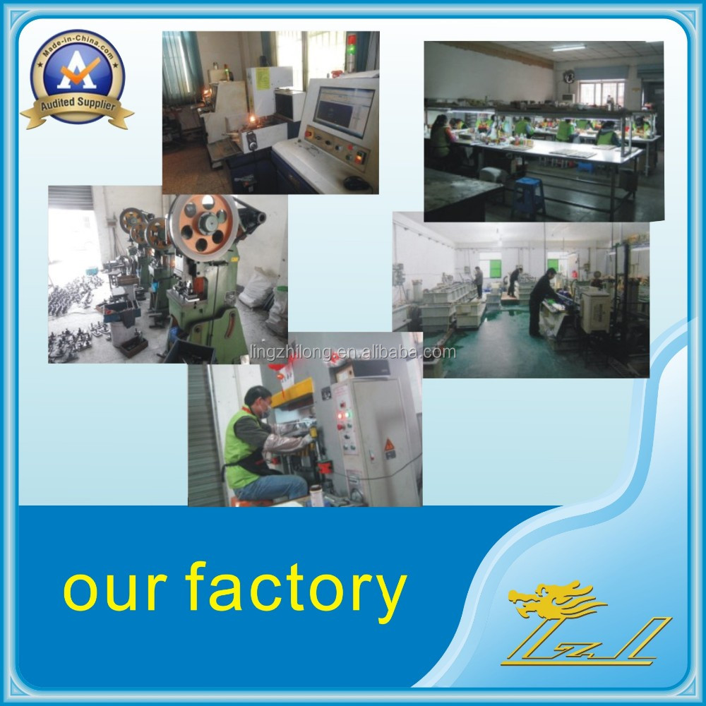our factory lingzhilong.jpg
