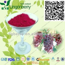 Grape Skin Extract Red Color, 100% natural food colorant