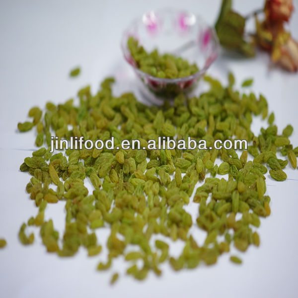 Xinjiang sun dry green 100% green raisin grape fruit seedless good top quality new crop green raisins sult for sale