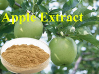 Organic Food grade Apple extract apple polyphenol Phloridzin