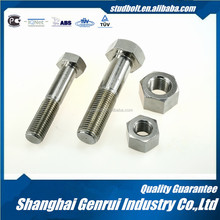 High Quality Furniture Decorative Screws And Nut And Bolt 1