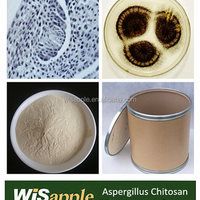 Wisapple Supply Aspergillus Niger Chitosan For