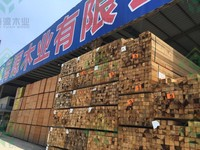 top quality Chinese Sawn white pine wood Timber/ sawn timber
