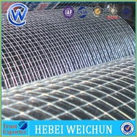 Welded Wire Mesh for Thailand(factoy)