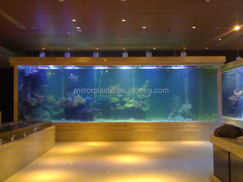 reef aquarium marine fish tank