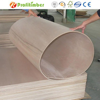 Low Price Poplar Flexible Plywood for Sale