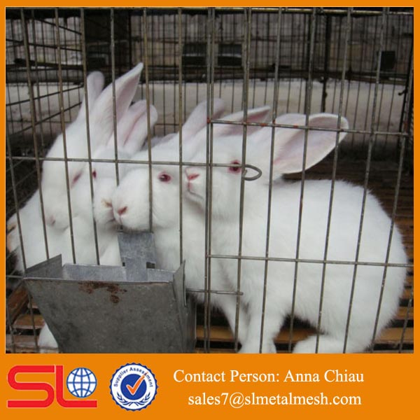 rabbit farm supplies / cheap rabbit cages / meat rabbit cages
