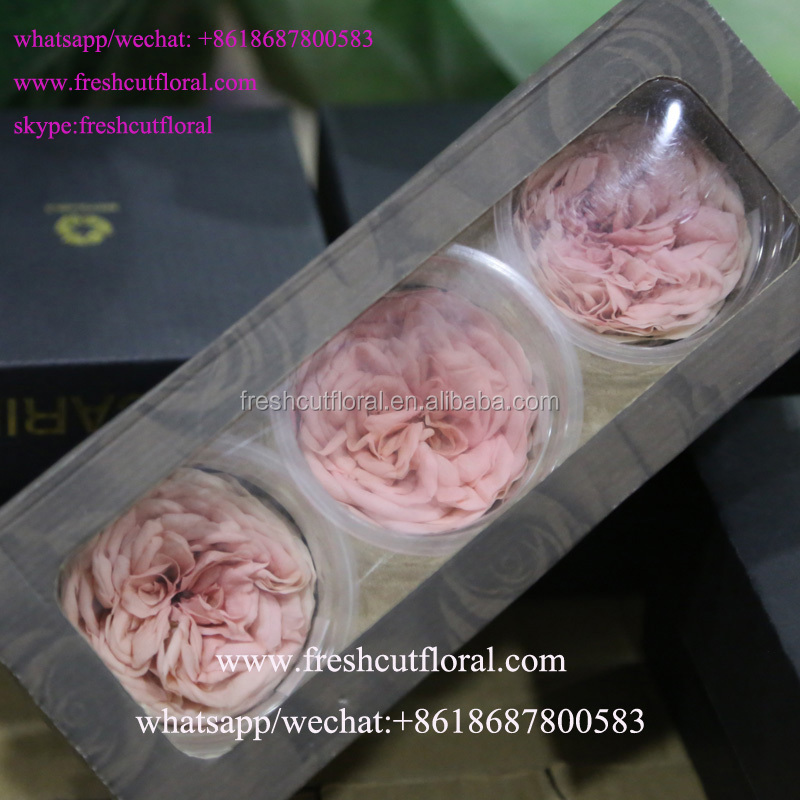 Best Wholesale Company Preserved Fresh Flower And Fresh Florist With Longevity From Kunming,Yunnan
