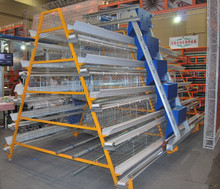 Hot Galvanized Automatic Chicken Cage for Growing Broilers and Layers (A3L)