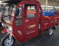 China New Semi Closed Tricycle Motorcycle/Passenger Or Cargo Transport Used Petrol Type Tricycle
