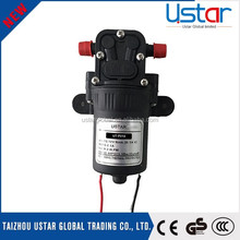 China supply 12v pesticide pump agriculture spraying products