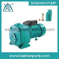 DP deep well self-priming water pump 1hp well pumps