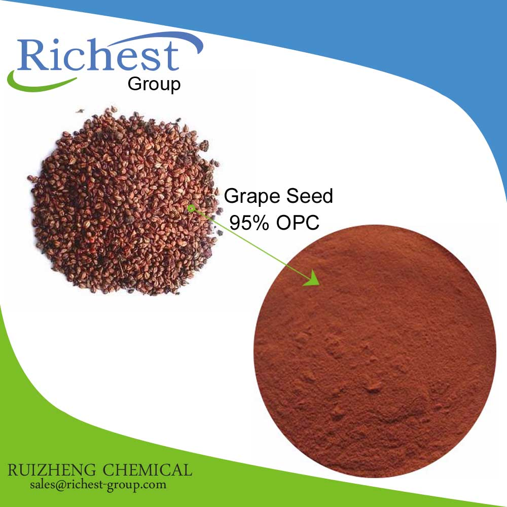 Factory Offer High Purity organic grape seed extract powder 95% opc