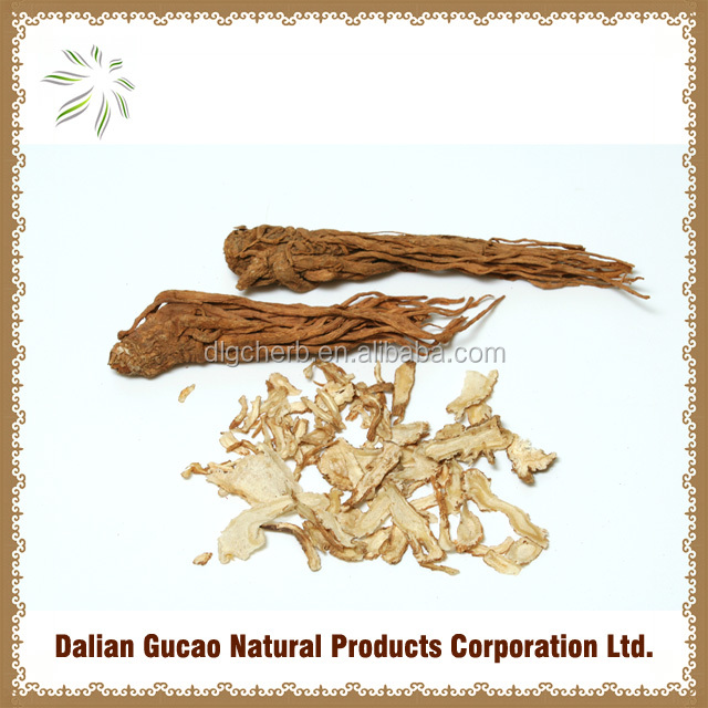 100%natural Chinese Angelica powder