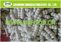 Wholesale China garlic,natural fresh garlic with good quality in China