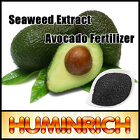 Huminrich Shenyang Soluble Agriculture Seaweed Extract Promote Avocado Growth Fertilizer