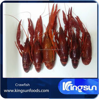Frozen Cooked Whole Crayfish/Crawfish in Dill Brine