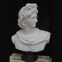 Professional apollo belvedere bust for home decoration